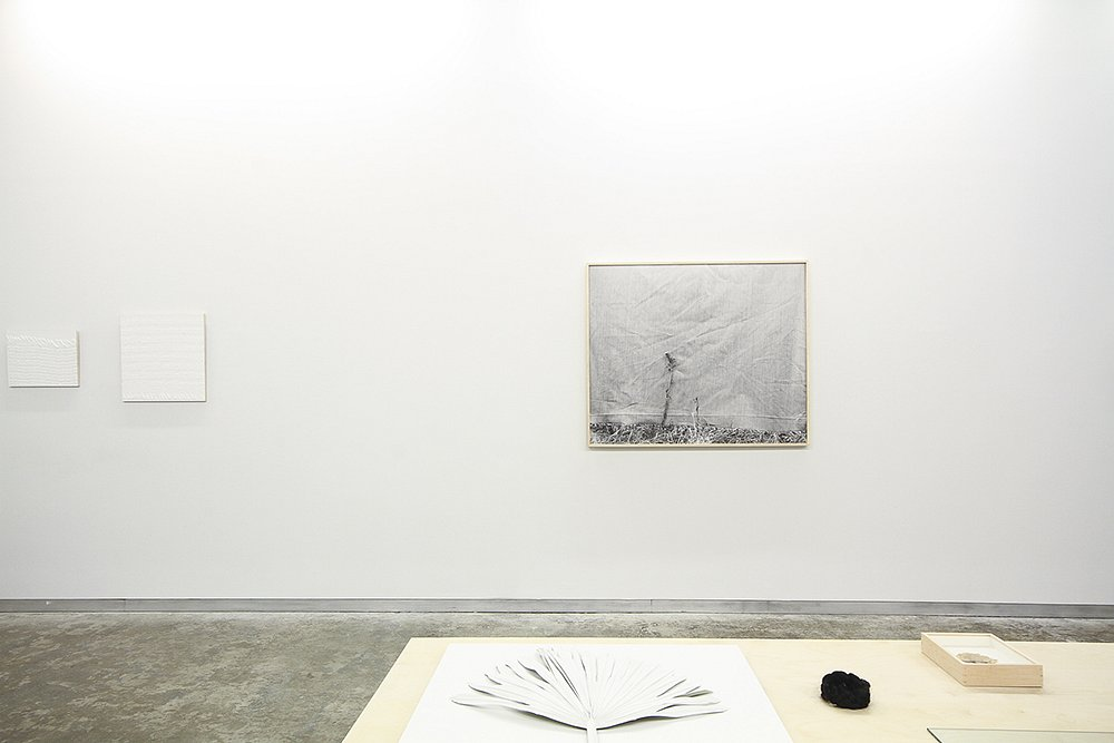 To Pack and Wear at Kate Werble Gallery, 2013