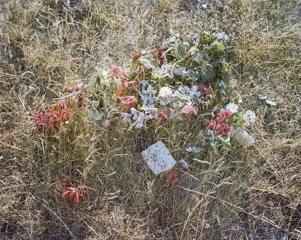 MS1091-FlowersII.jpg