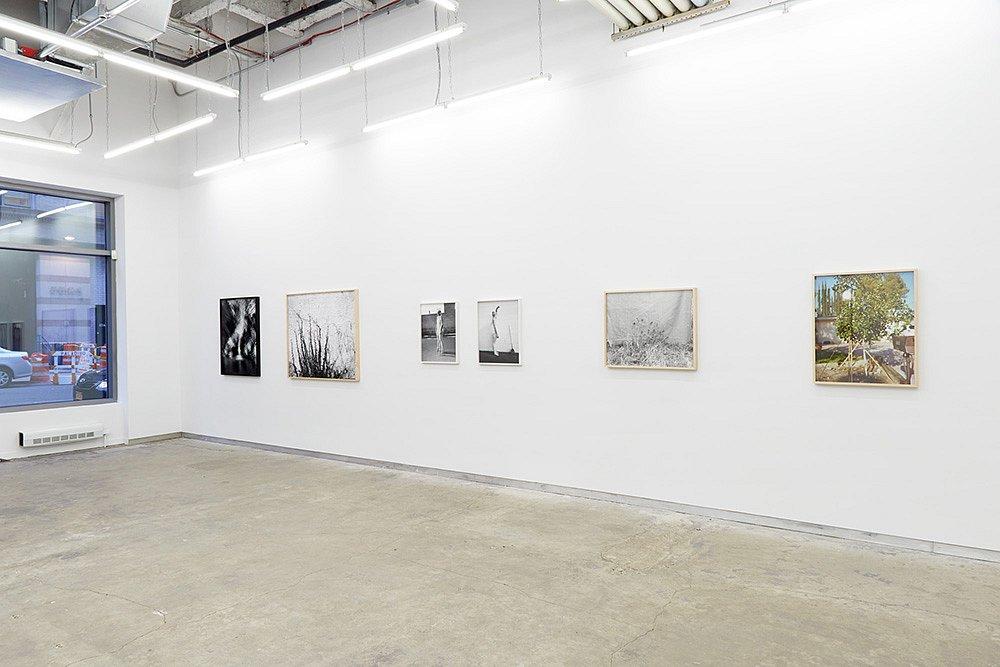 KWG-Schiff-exhibition-view-2014-v13.jpg